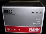 FIAMM Touchaku20121219-183636.JPG