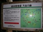 SampoChichibuKouyou20151025-170238.JPG