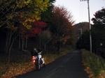 SampoChichibuKouyou20151025-170919.JPG