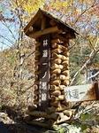 SampoEnzanKouyou20151105-120518.JPG