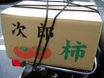 SampoHoyaKakiHakobi2011_1120_133103.jpg