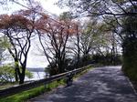 SampoSayamako1004182010_0418_134648.jpg
