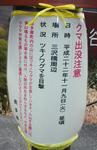 SampoShoshuNoOkutama2010_1202_160021.jpg