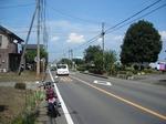 堀兼ひまわり畑 20190817-125401.JPG