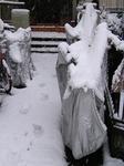 SNOW20130114-123343.JPG