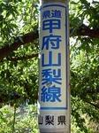 SampoEnzanKouyou20151105-145233.JPG