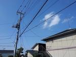 SampoKotesashi 20200607-150201.JPG