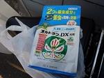 SampoKotesashi 20200607-161240.JPG