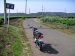 SampoSayamachaBatake20130518 143641.JPG