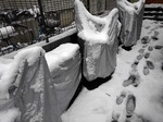 Snow 20200329-110626.JPG