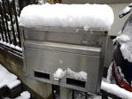 Snow 20200329-110641.JPG