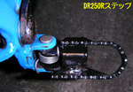 StepDR250RSouchaku2011_1020_175700.jpg