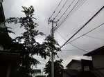 Tsuukin20170804-181109.JPG