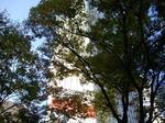 Tsuukin20171109-150930.JPG