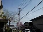 Tsuukin 20190419-085106.JPG