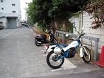 TsuukinUdon20151030-091009.JPG